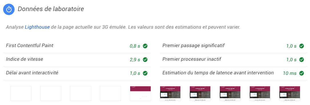 données de laboratoire page speed insight