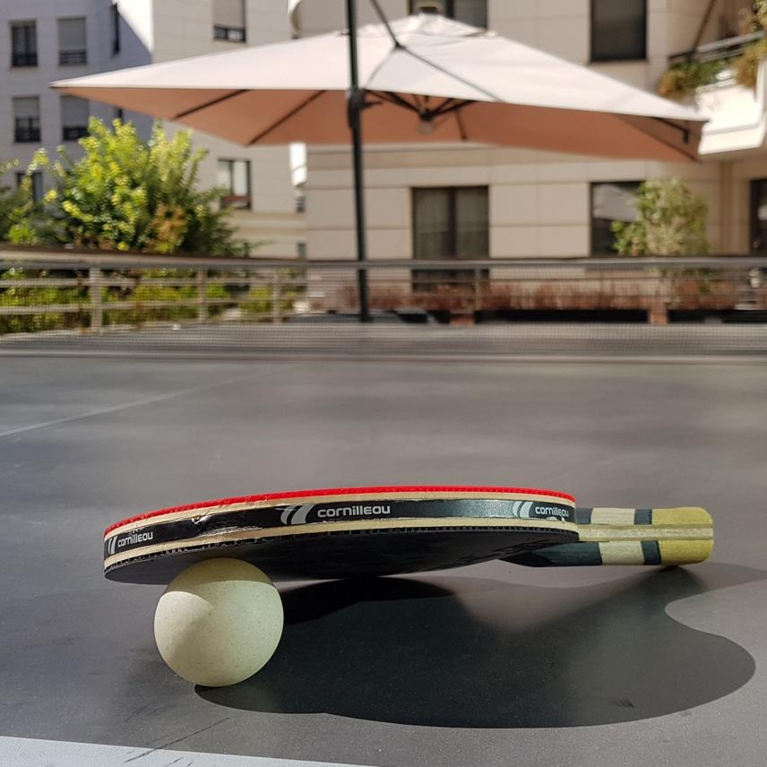 ping pong primelis